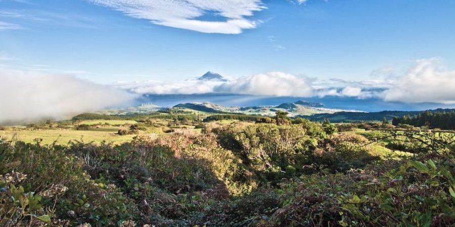 Pico from Faial